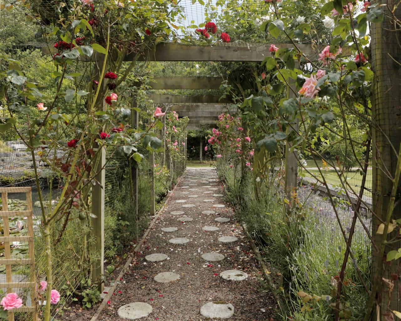 Tyrrelstown House Garden | Gardens of Ireland Trust