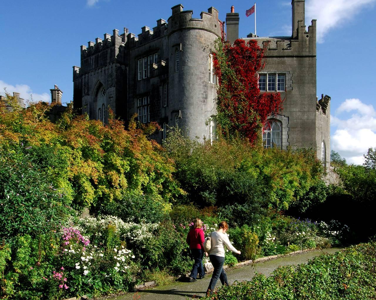 Garden Centre: Birr Castle Garden & Science Centre
