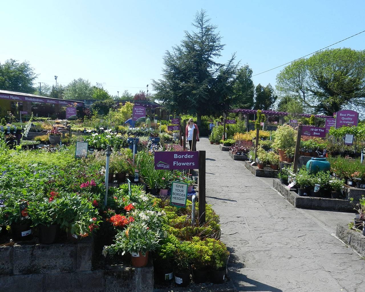Garden Centre: O'Meara's Garden Centre